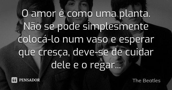 O amor é como uma planta. Não se pode simplesmente colocá-lo num vaso e esperar que cresça, deve-se de cuidar dele e o regar...... Frase de The Beatles.