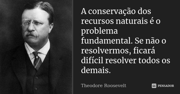 A conservação dos recursos naturais é o problema fundamental. Se não o resolvermos, ficará difícil resolver todos os demais.... Frase de Theodore Roosevelt.