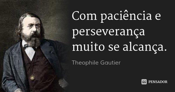Com paciência e perseverança muito se alcança.... Frase de Theophile Gautier.
