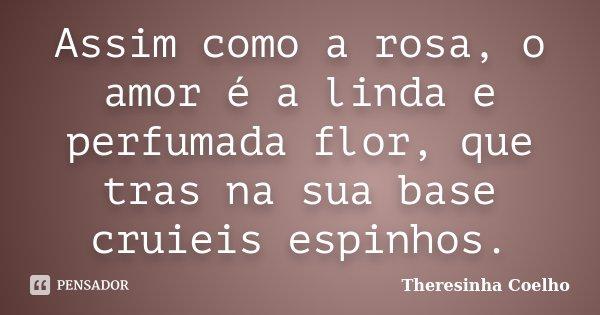 Assim como a rosa, o amor é a linda e perfumada flor, que tras na sua base cruieis espinhos.... Frase de Theresinha Coelho.