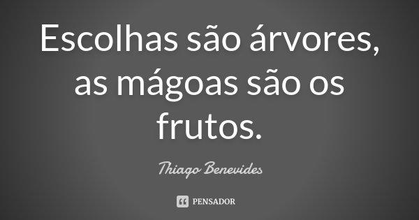 Escolhas são arvores, as mágoas são os frutos.... Frase de Thiago Benevides.