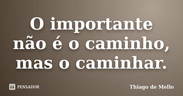O importante não é o caminho, mas o caminhar.... Frase de Thiago de Mello.