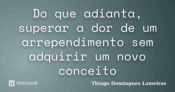 Do que adianta, superar a dor de um arrependimento sem adquirir um novo conceito... Frase de Thiago Domingues Lameiras.