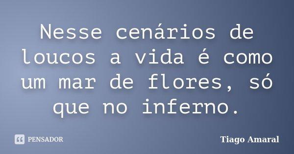 Nesse cenários de loucos a vida é como um mar de flores, só que no inferno.... Frase de Tiago Amaral.