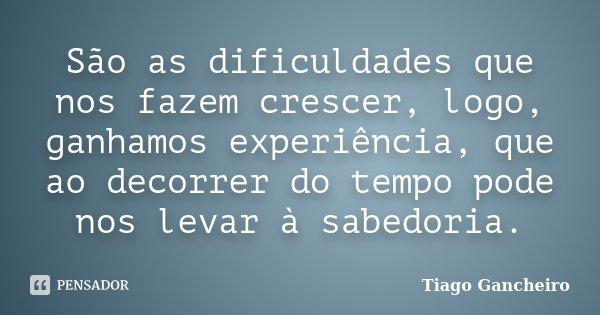 São as dificuldades que nos fazem crescer, logo, ganhamos experiência, que ao decorrer do tempo pode nos levar à sabedoria.... Frase de Tiago Gancheiro.