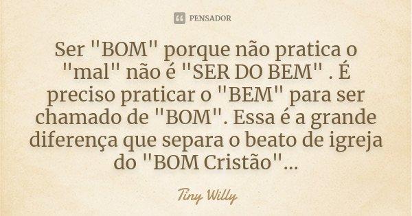 """Ser """"BOM"""" porque não pratica o """"mal"""" não é """"SER DO BEM"""" . É preciso praticar o """"BEM"""" para ser chamado de """"BOM""""... Frase de Tiny Willy."""