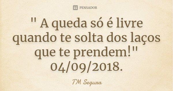 """"""" A queda só é livre quando te solta dos laços que te prendem!"""" 04/09/2018.... Frase de TM Segura."""