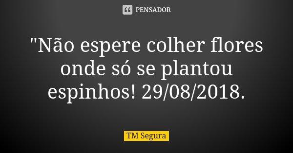 """""""Não espere colher flores onde só se plantou espinhos! 29/08/2018.... Frase de TM Segura."""
