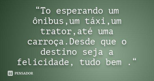 """""""To esperando um ônibus,um táxi,um trator,até uma carroça.Desde que o destino seja a felicidade, tudo bem .""""... Frase de Desconhecido."""
