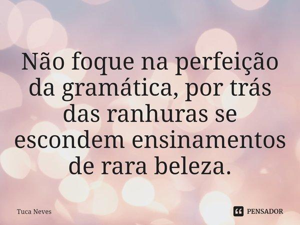Não foque na perfeição da gramática, por trás das ranhuras se escondem ensinamentos de rara beleza.... Frase de Tuca Neves.