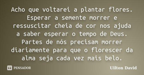 Acho que voltarei a plantar flores. Esperar a semente morrer e ressuscitar cheia de cor nos ajuda a saber esperar o tempo de Deus. Partes de nós precisam morrer... Frase de Uilton David.