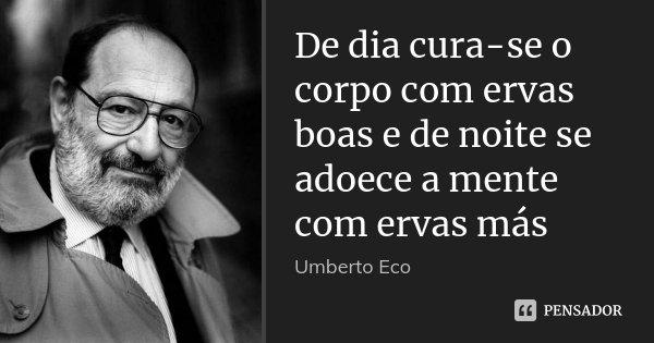 De dia cura-se o corpo com ervas boas e de noite se adoece a mente com ervas más... Frase de Umberto Eco.