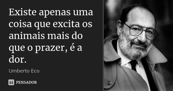 Existe apenas uma coisa que excita os animais mais do que o prazer, é a dor.... Frase de Umberto Eco.