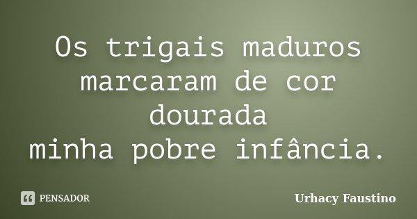 Os trigais maduros marcaram de cor dourada minha pobre infância.... Frase de Urhacy Faustino.