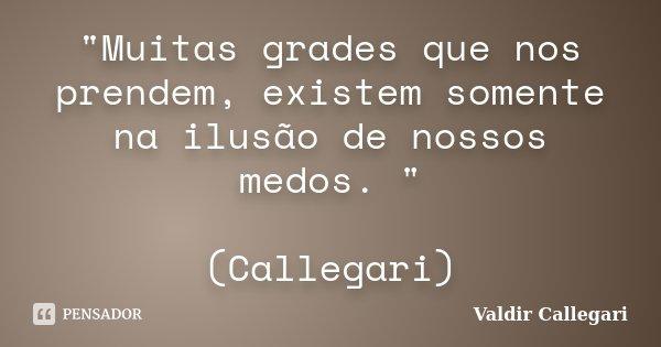 """""""Muitas grades que nos prendem, existem somente na ilusão de nossos medos. """" (Callegari)... Frase de Valdir Callegari."""
