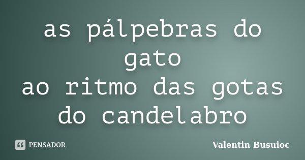 as pálpebras do gato ao ritmo das gotas do candelabro... Frase de Valentin Busuioc.