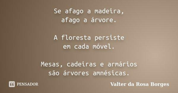 Se afago a madeira, afago a árvore. A floresta persiste em cada móvel. Mesas, cadeiras e armários são árvores amnésicas.... Frase de Valter da Rosa Borges.