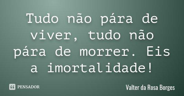 Tudo não pára de viver, tudo não pára de morrer. Eis a imortalidade!... Frase de Valter da Rosa Borges.