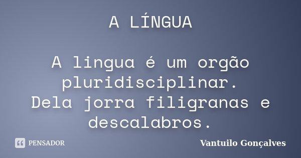 A LÍNGUA A lingua é um orgão pluridisciplinar. Dela jorra filigranas e descalabros.... Frase de vantuilo Gonçalves.