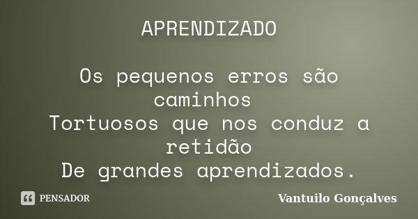 APRENDIZADO Os pequenos erros são caminhos Tortuosos que nos conduz a retidão De grandes aprendizados.... Frase de Vantuilo Gonçalves.