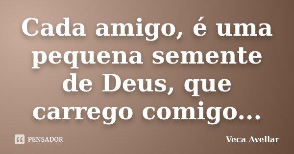 Cada amigo, é uma pequena semente de Deus, que carrego comigo...... Frase de Veca Avellar.