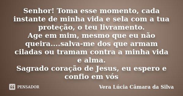 Senhor! Toma esse momento, cada instante de minha vida e sela com a tua proteção, o teu livramento. Age em mim, mesmo que eu não queira....salva-me dos que arma... Frase de Vera Lúcia Câmara da Silva.