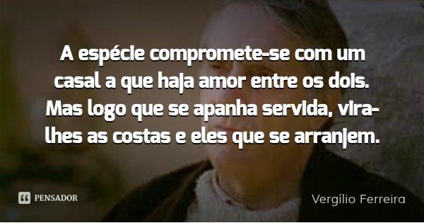 A espécie compromete-se com um casal a que haja amor entre os dois. Mas logo que se apanha servida, vira-lhes as costas e eles que se arranjem.... Frase de Vergílio Ferreira.