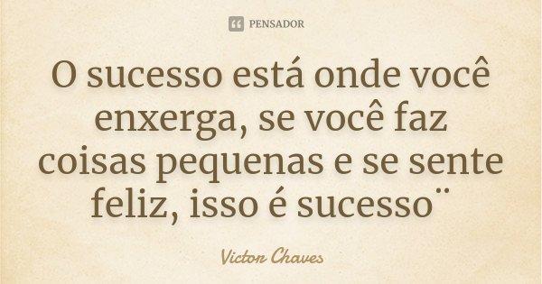 O sucesso está onde você enxerga, se você faz coisas pequenas e se sente feliz, isso é sucesso¨... Frase de Victor chaves.