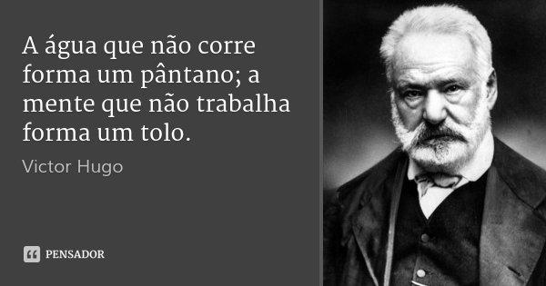 A água que não corre forma um pântano; a mente que não trabalha forma um tolo.... Frase de Victor Hugo.