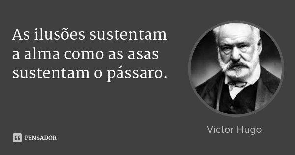 As ilusões sustentam a alma como as asas sustentam o pássaro.... Frase de Victor Hugo.