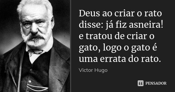 Deus ao criar o rato disse: já fiz asneira! e tratou de criar o gato, logo o gato é uma errata do rato.... Frase de Victor Hugo.