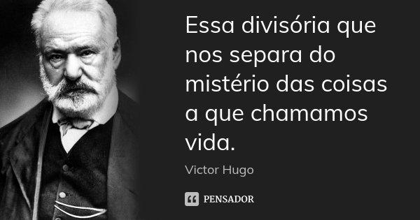 Essa divisória que nos separa do mistério das coisas a que chamamos vida.... Frase de Victor Hugo.