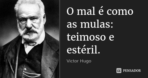 O mal é como as mulas: teimoso e estéril.... Frase de Victor Hugo.