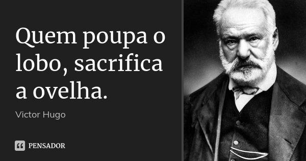 Quem poupa o lobo, sacrifica a ovelha.... Frase de Victor Hugo.