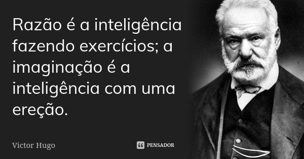 Razão é a inteligência fazendo exercícios; a imaginação é a inteligência com uma ereção.... Frase de Victor Hugo.