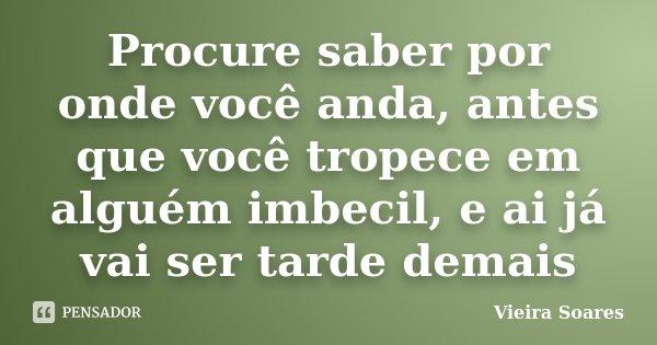 Procure saber por onde você anda, antes que você tropece em alguém imbecil, e ai já vai ser tarde demais... Frase de Vieira Soares.