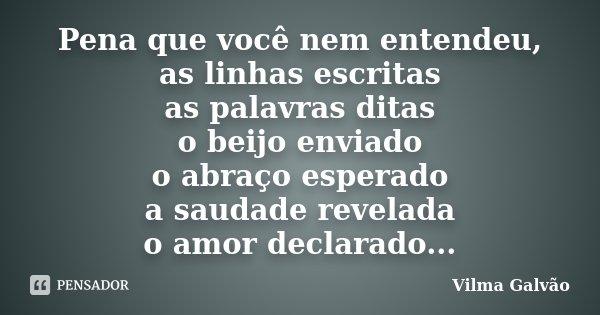 Pena que você nem entendeu, as linhas escritas as palavras ditas o beijo enviado o abraço esperado a saudade revelada o amor declarado...... Frase de Vilma Galvão.