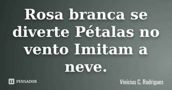 Rosa branca se diverte Pétalas no vento Imitam a neve.... Frase de Vinícius C. Rodrigues.