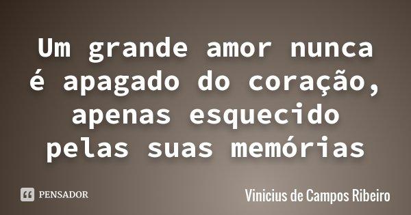 Um grande amor nunca é apagado do coração, apenas esquecido pelas suas memórias... Frase de Vinicius de Campos Ribeiro.