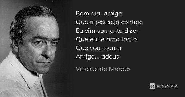 Bom dia, amigo Que a paz seja contigo Eu vim somente dizer Que eu te amo tanto Que vou morrer Amigo... adeus... Frase de Vinicius de Moraes.