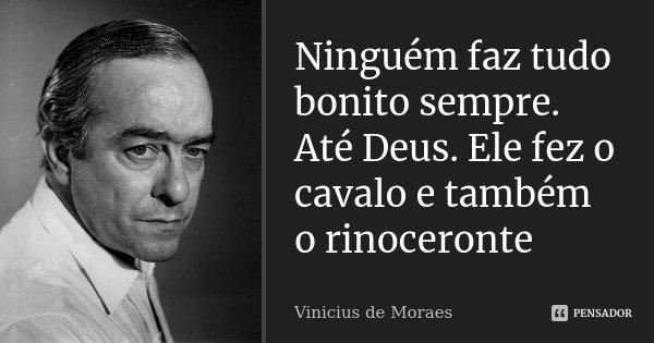 Ninguém faz tudo bonito sempre. Até Deus. Ele fez o cavalo e também o rinoceronte... Frase de Vinicius de Moraes.
