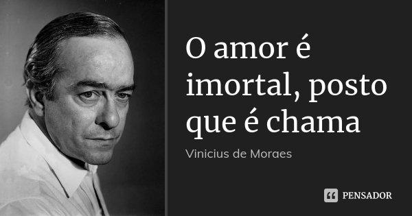 O amor é imortal, posto que é chama... Frase de Vinícius de Moraes.