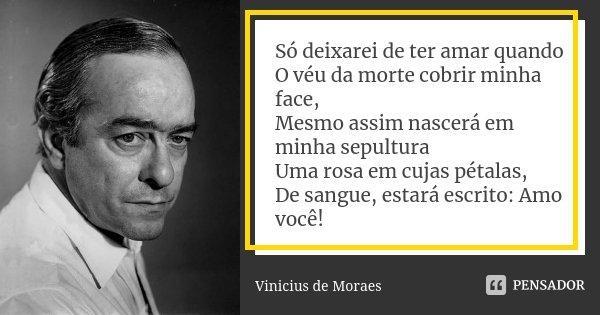 Só deixarei de ter amar quando O véu da morte cobrir minha face, Mesmo assim nascerá em minha sepultura Uma rosa em cujas pétalas, De sangue, estará escrito: Am... Frase de Vinicius de Moraes.