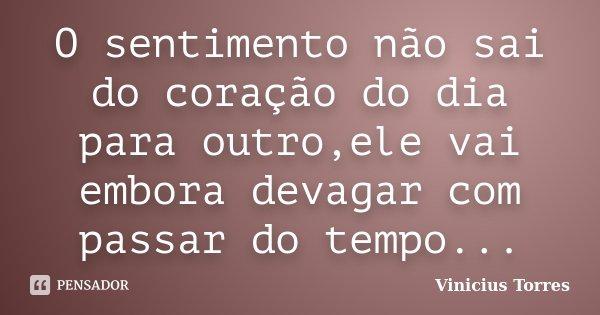 O sentimento não sai do coração do dia para outro,ele vai embora devagar com passar do tempo...... Frase de Vinicius Torres.