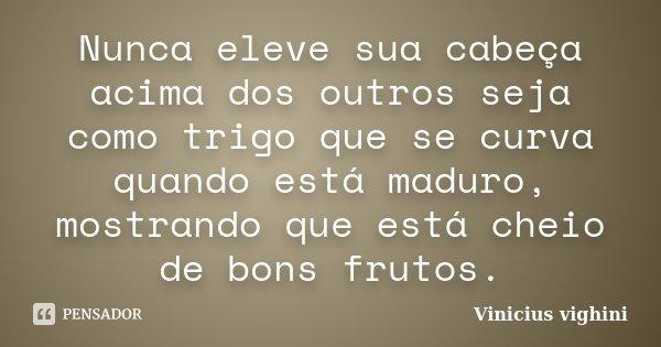 Nunca eleve sua cabeça acima dos outros seja como trigo que se curva quando está maduro, mostrando que está cheio de bons frutos.... Frase de Vinicius vighini.