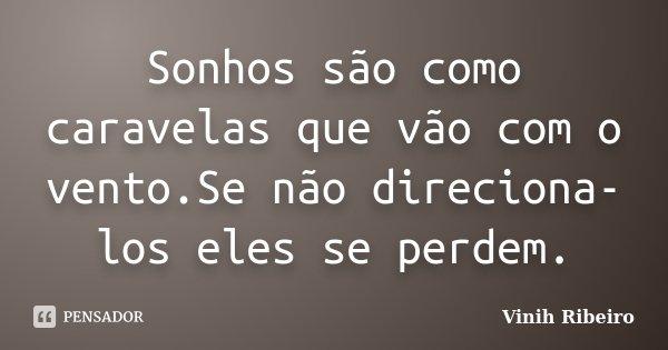 Sonhos são como caravelas que vão com o vento.Se não direciona-los eles se perdem.... Frase de Vinih Ribeiro.