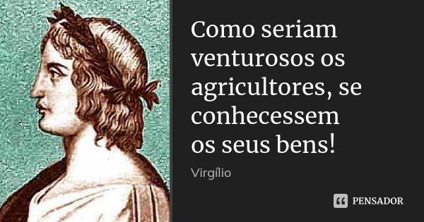 Como seriam venturosos os agricultores, se conhecessem / os seus bens!... Frase de Virgílio.