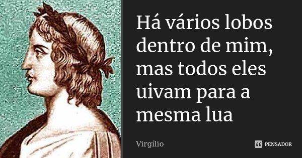 Há vários lobos dentro de mim, mas todos eles uivam para a mesma lua... Frase de Virgílio.