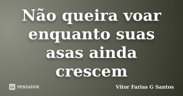 Não queira voar enquanto suas asas ainda crescem... Frase de Vitor Farias G Santos.