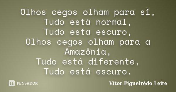 Olhos cegos olham para si, Tudo está normal, Tudo esta escuro, Olhos cegos olham para a Amazônia, Tudo está diferente, Tudo está escuro.... Frase de Vítor Figueirêdo Leite.